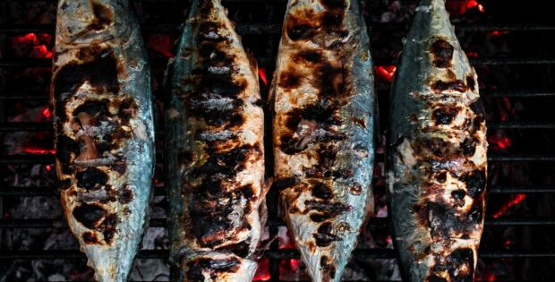 Sudah Tahu Teknik Mengolah Ikan Agar Nutrisinya Tidak Hilang?