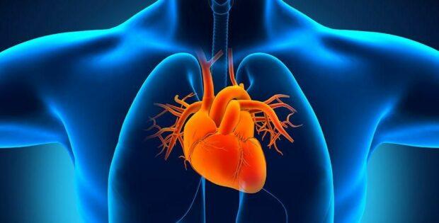 Ketahui Penyebab Pembengkakan Jantung