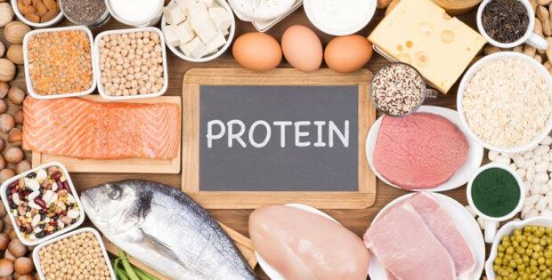 Ini Tips Dalam Memilih Protein Bubuk