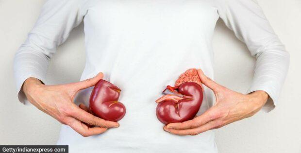 Ketahui Faktor Risiko Terjadinya Infeksi Pada Ginjal